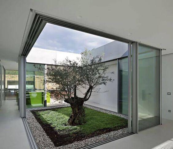 Small indoor gardens