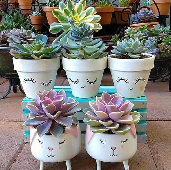 best succulent decor images 1
