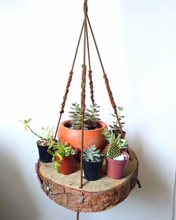 best succulent decor images 9