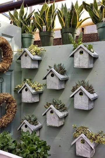 creative decoration succulents 2