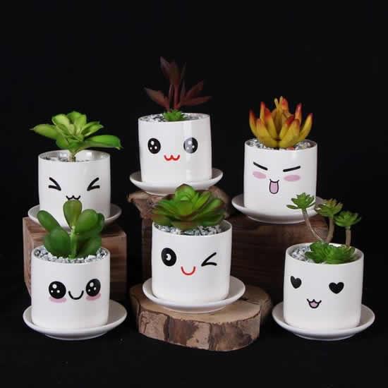 creative decoration succulents 7