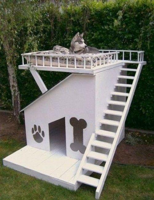 original dog houses 3