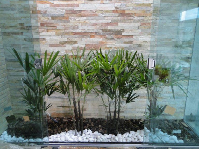 small indoor gardens 8