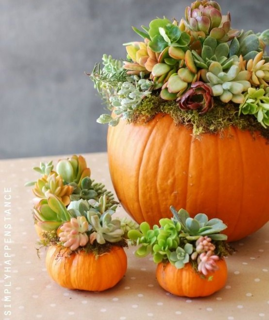 thanksgiving decoration 10