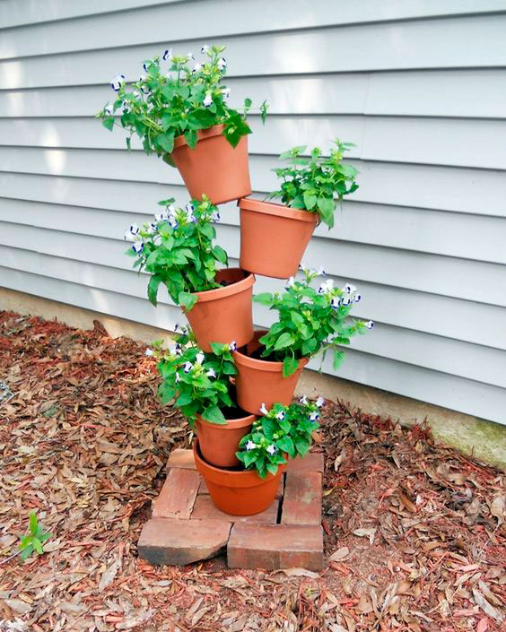 vertical gardening ideas 2