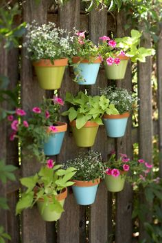vertical gardening ideas 4